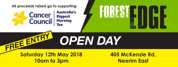 Experience Forest Edge CYC at Our Open Day!